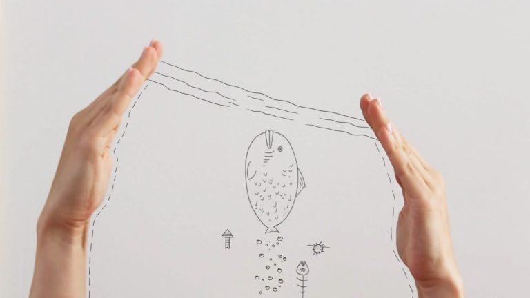 Video top 5: Hands up
