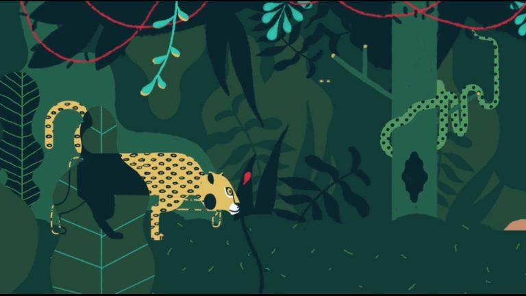 Video top 5: Jungle